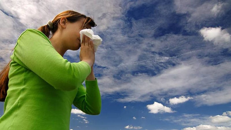 Things to Remember When Searching for an Allergy Doctor