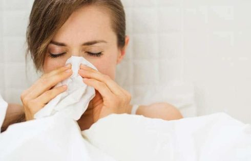 The main causes of allergies